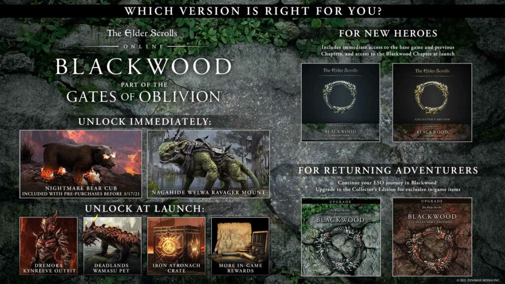 This is The Elder Scrolls Online: Backwood – your new adventure and buddy